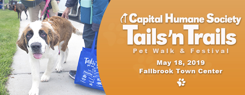2019 Tails 'N Trails Pet Walk & Festival